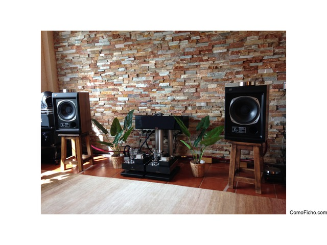 Dynaudio Focus 200 C Black Ask