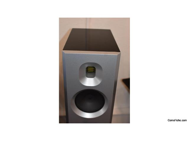 Burmester B25 Speakers