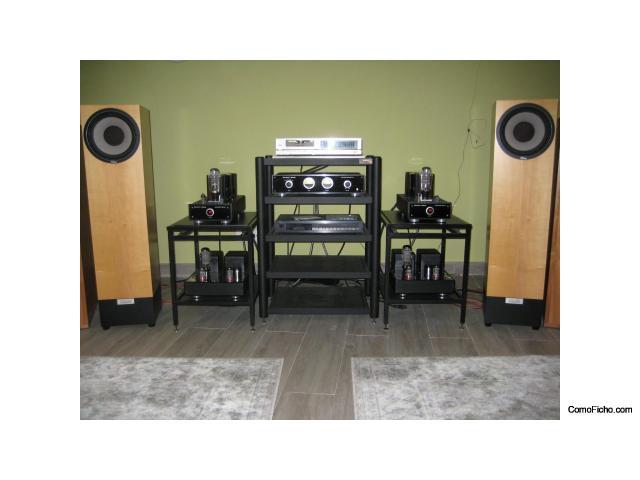 En venta pareja de cajas acústicas WLM Diva