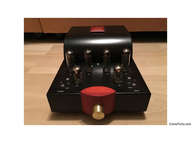 Amplificador Puresound A10 (VENDIDO)