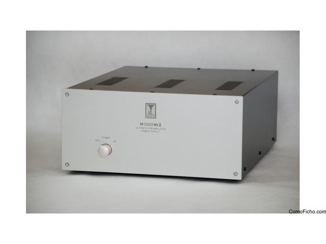 Audio Note Kondo M1000 MkII