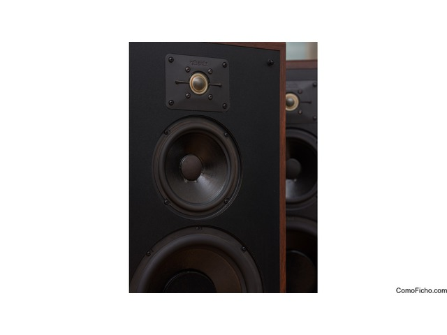 Polk Audio Monitor 7C